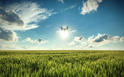 Agriculture et numérique : le secteur face aux cybermenaces